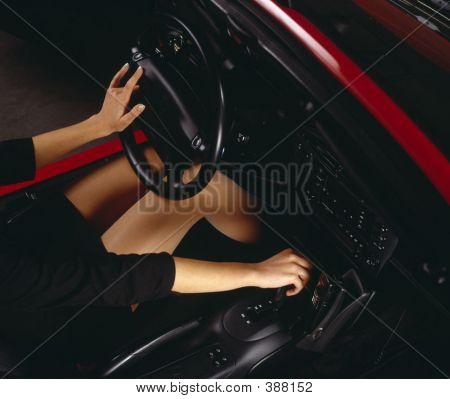 Woman Legs1