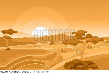 Golden Sunrise In Asian Rice Field Paddy Plantation Agriculture Illustration