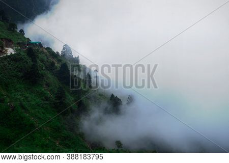 Landscape Shot Of Luscious Green Trees Covered With Clouds