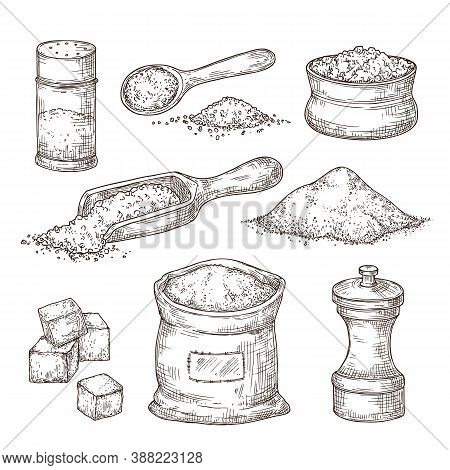 Salt Sketch. Hand Draw , Vintage Bowl Spoon With Sea Salt Powder. Food Ingredients To Cook, Isolated