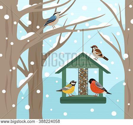 Winter Feeder. Snow Woodland, Birds Food On Tree Poster. Feeding Wild Animals On Nature, Flat Bullfi