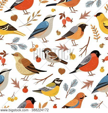 Forest Winter Birds Pattern. Forest Animal Background, Flat Snowy Tree Branches. Holiday Bullfinch L