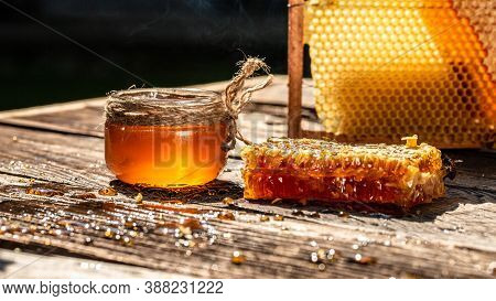 Delicious Honey And Fresh Honeycombs. Honey, Honeycomb, Honey Bee. Honey Background. Beekeeping Conc