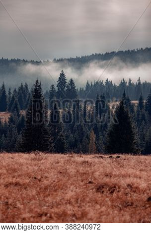 Beautiful landscapes from the heart of Transylvania, Romania, captured in autumn