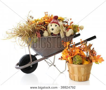 A toy puppy wearing a red hat and sweater in a rustic weelbarrow burried under colorful fall foliage.  A basket filled with gourds and more foliage sits at the base.  On a white background.