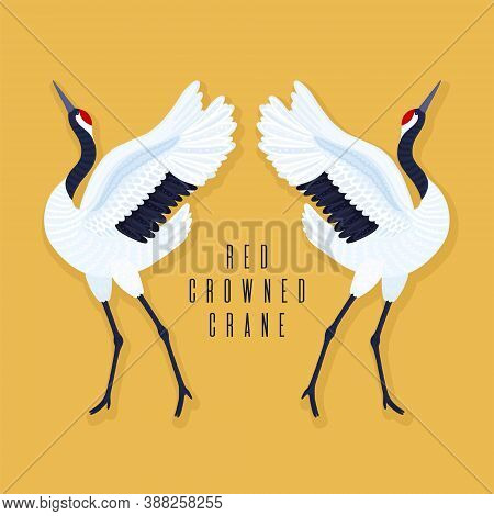 Pair Of Red Crowned Cranes And Heart. Yellow Background With Dancing East Asian Birds. Endangered Sp