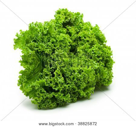Fresh salad lettuce?(frilled lettuce) isolated on white