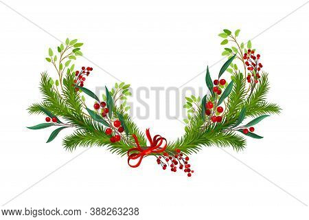 Evergreen Branches Of Coniferous Tree And Red Berry Arranged In Semicircular Vector Composition