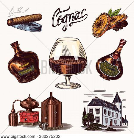 Cognac And Glass. Bottles With Labels, Cigar And Cocktail, Sweets And Farm, Chocolate And Man. Engra