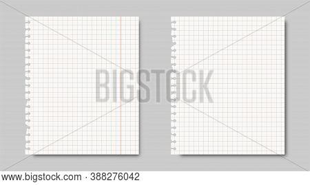 Notebook Paper Sheet Background. Blue Grades Lines Template. School Homework Blank List