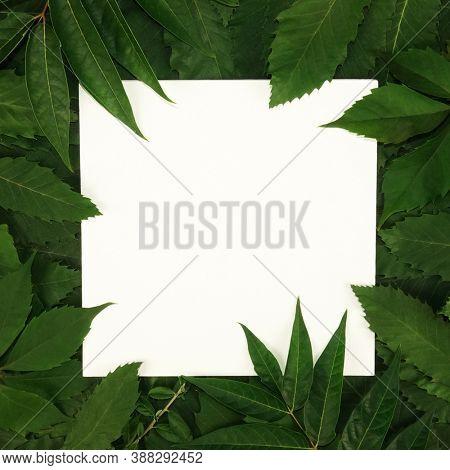 Trendy seasonal green leaves text frame background