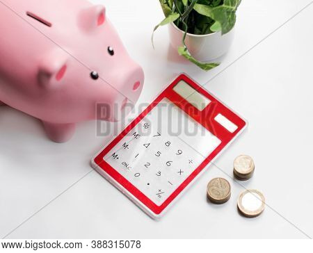 Pink Piggy Or Coin Bank Or Piggybank Or Money Box, Coins And Calculator - Finance And Savings Concep
