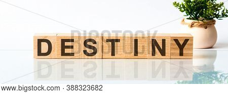 Destiny Motivation Text On Wooden Blocks Business Concept White Background. Front View Concepts, Flo