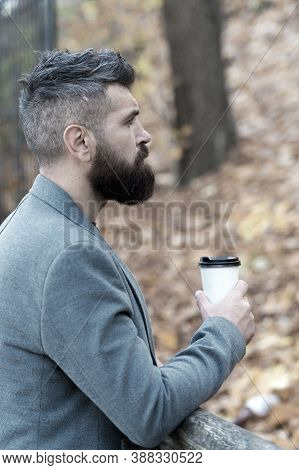 Man Bearded Hipster Prefer Coffee Take Away. Businessman Bearded Guy Drink Coffee Outdoors. Hipster