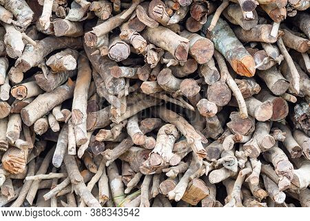 Firewood Pile Stacked Chopped Wood Trunks For Winter Heating Fireplace And For Use Furnace Kindling.