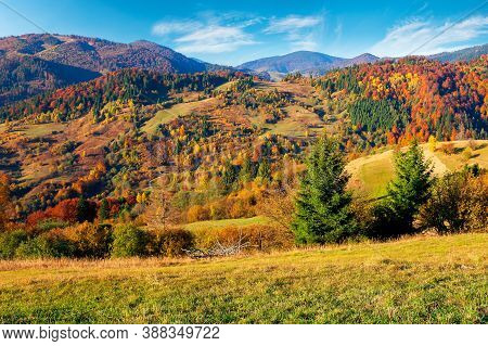 Rural Landscape In Mountains. Scenery In Fall Colors. Beautiful Sunny Weather With Fluffy Clouds On