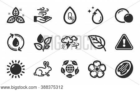 Animal Tested, Sunny Weather And Bad Weather Icons Simple Set. No Alcohol, Eco Organic And Wind Ener