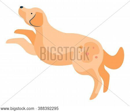 Pet Character, Active Animal Jumping And Playing. Isolated Dog With Spot On Furry Coat. Playful Pupp