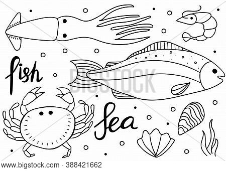 Unerwater Doodle Set. Crab And Shrimp, Fish, Oyster Line Hand Drawn Collection Creatures Black Isola