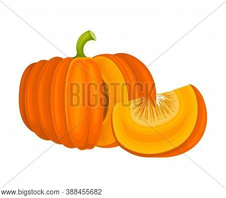 Round Pumpkin With Cut Section Showing Seeds And Pulp Vector Illustration