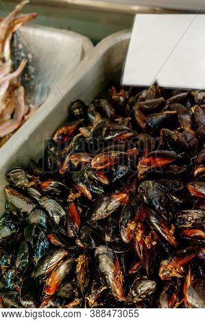 Freshly Caught Mussels In A Net In The Window Of The Seafood Market. Mussels Are Caught And Prepared