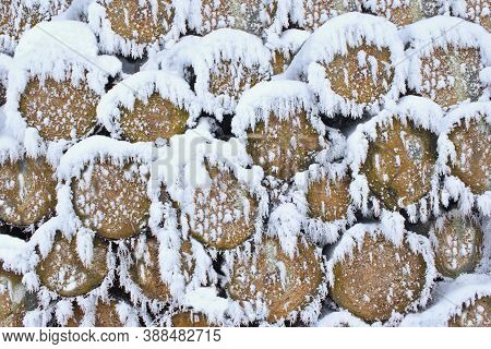 Wooden Logs Covered With Snow As Winter Background