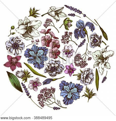 Round Floral Design With Colored Anemone, Lavender, Rosemary Everlasting, Phalaenopsis, Lily, Iris S