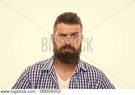 Wait What. Man Serious Face Raising Eyebrow Not Confident. Have Some Doubts. Hipster Bearded Face No