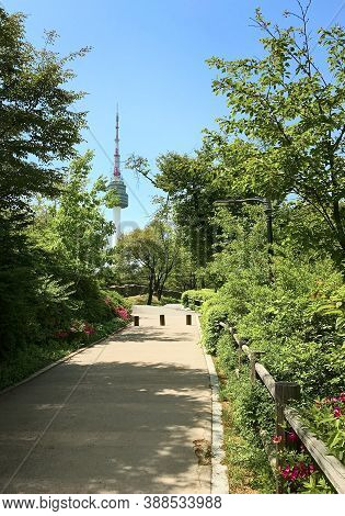 Spring View Of Namsan Public Park On Namsan Mountain In The Center Of Seoul, South Korea