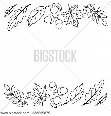 Autumn Background With Space And Border Of Leaves, Mushrooms, Acorns On Edges. For Invitation, Endin