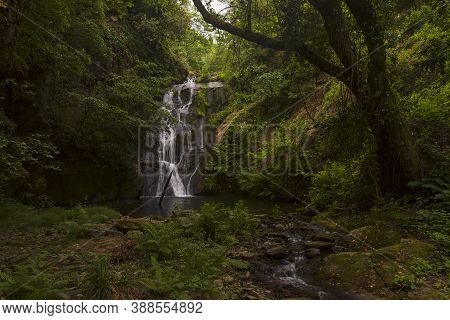 Waterfall Mystique Of A Pristine Forest In Mt. Athos.