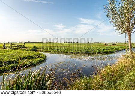 Characteristic Agricultural Polder Landscape In The Alblasserwaard Region In The Dutch Province Of S