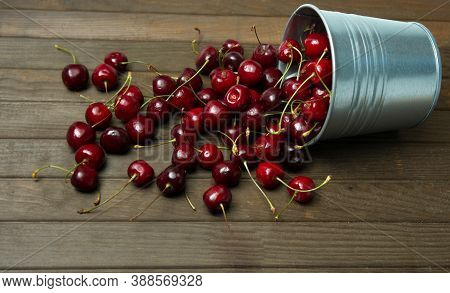 Fresh Red Ripe Cherries In A Small Metal Bucket Overturned On The Wooden Table