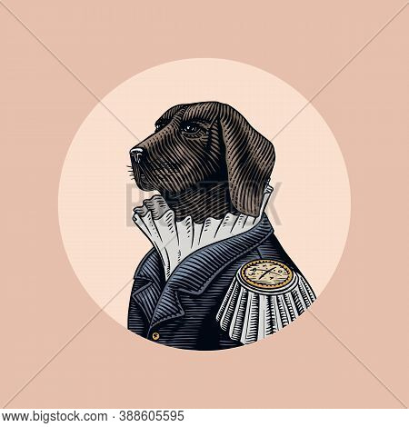 Dog Officer Or Military Man In The Old Uniform. Great Dane. Fashion Animal Character. Hand Drawn Vin