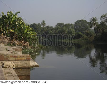 The Backwaters And Swampland In The Kerala Region In India