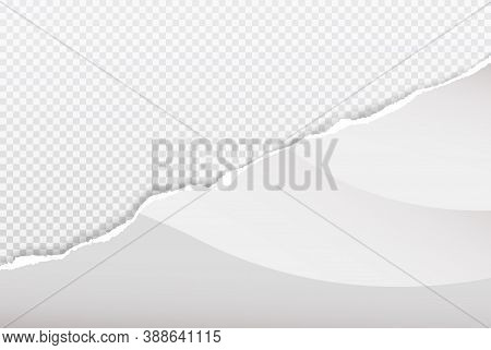 Piece Of Torn White Paper Is On Transparent Squared Background For Text, Advertising Or Design. Vect
