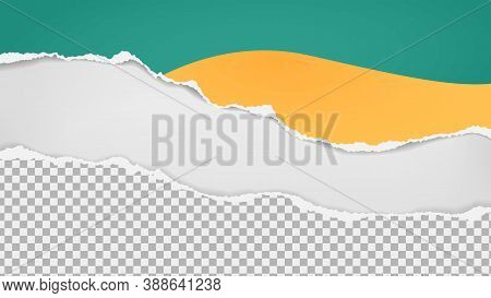 Pieces Of Torn Colorful Squared Paper Are On White Background For Text, Advertising Or Design. Vecto