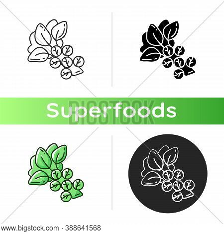 Brussels Sprouts Icon. Healthy Cabbege Types. Eco Foods Variety. Natural Meal Options. Vegetables Fu