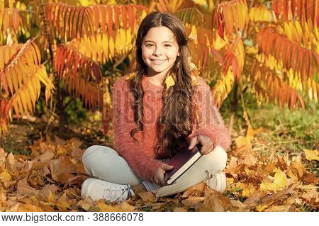 Reading Helps Seed Of Knowledge Grow. Cute Little Child Learning To Read On Autumn Landscape. Read A