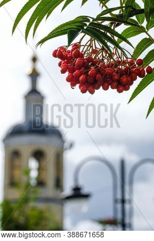 The image of ashberry and church under the background