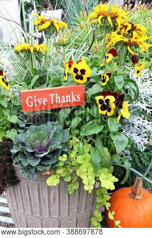 Thanksgiving floral arrangement with a small pumpkin. Autumn flower basket with winter pansies and rudbeckia. Give thanks, concept of gratitude.