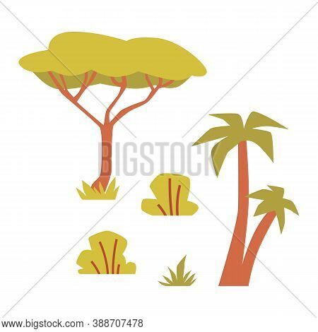 Set Of Plants Of African Savannah A Flat Isolated Vector Illustration