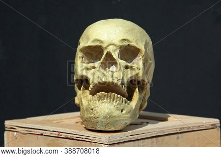 Human Skull. Halloween Human Skull on a wooden shipping crate. Spooky Human Skull isolated on black.