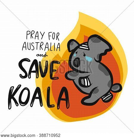 Save Injured Koala From Fire And Pray For Australia Cartoon Vector Illustration