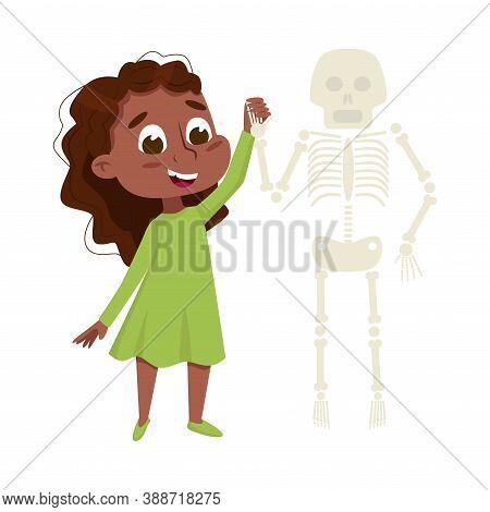 Curious Girl Examinig Skeleton At Biology Lesson Vector Illustration