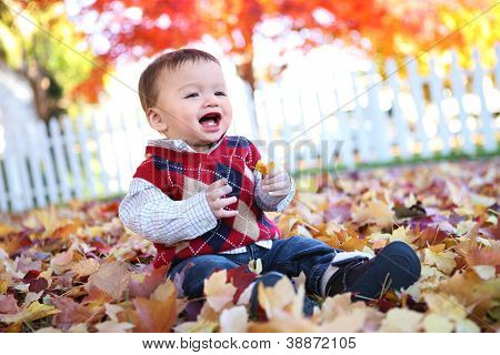 A cute young baby boy playing in the leaves during fall