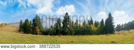 Foggy Autumn Landscape Panorama. Spruce Trees On The Meadow. Mountain Behind The Morning Mist. Cloud
