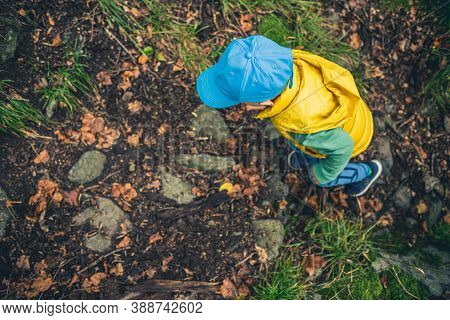 Little Boy Hiking In Mountains, Family Adventure, Top View. Little Child Walking In Rocky Green Fore