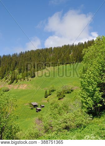 Traditional Mountain Chalets In The Alps In Summer, France