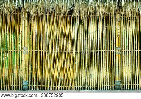 Bamboo Structure, Natural Green Bamboo Wooden Wall Made From Many Bamboo Sticks Or Trunks For Buildi